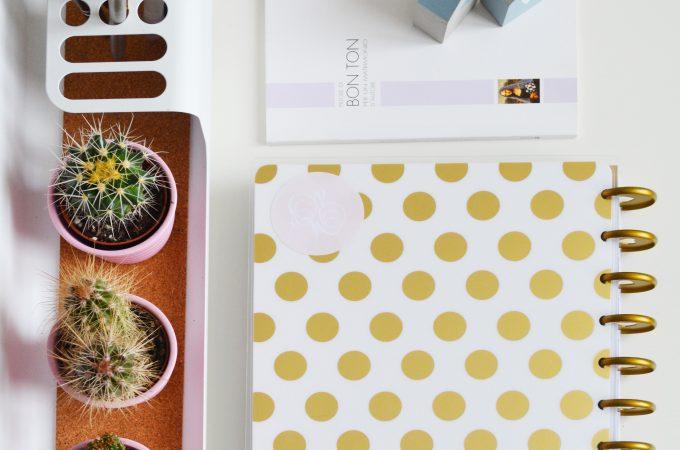 organized desk with cacti