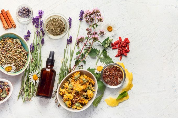 various kinds of herbs